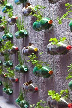 10 ideas para hacer tu huerto urbano ~ Manzanaterapia