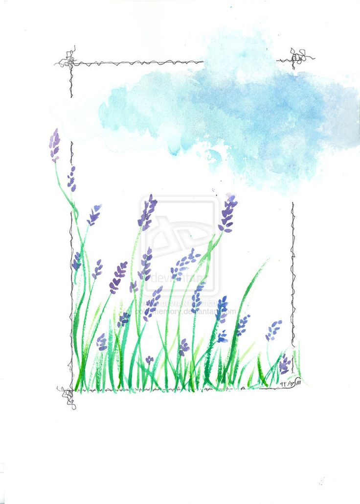 lavenders by cold-memory on DeviantArt