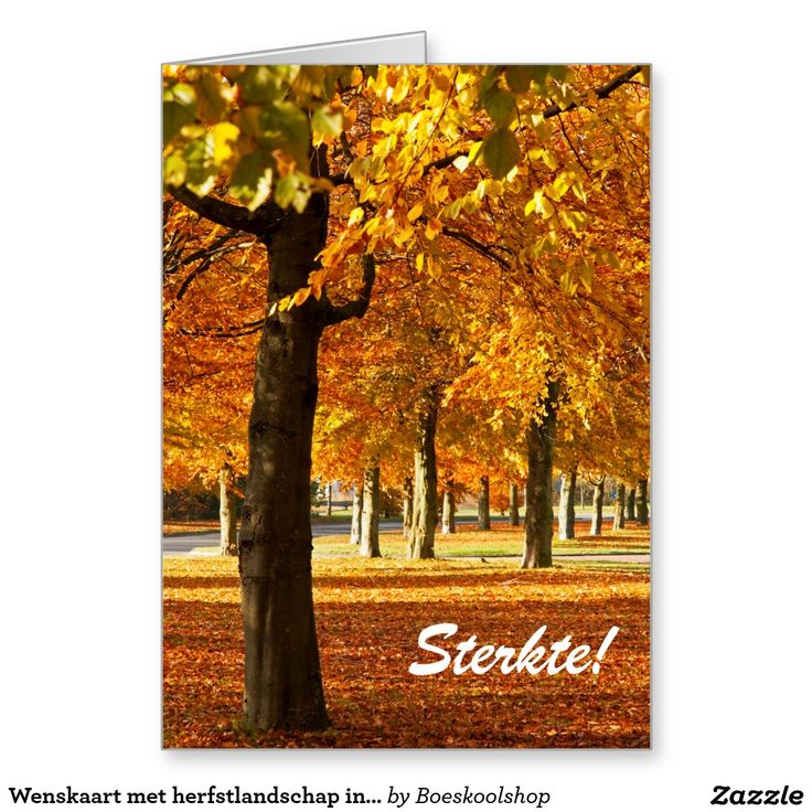 Wenskaart met herfstlandschap in Oldenzaal. Tekst is verwijderbaar c.q. aanpasbaar qua lettertype, kleur, grootte en locatie!