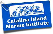 Outdoor education at Catalina Island Marine Institute's outdoor science school will enrich and inspire your students. Three-day, Five-Day and weekends at Toyon Bay, Fox Landing and Cherry Cove - Marine biology/Island Ecology. Catalina Sea Camp's overnight marine biology and island adventure summer camp offers snorkeling Scuba certifications, instruction in marine biology, underwater photography/video, sailing, and summer camp fun.