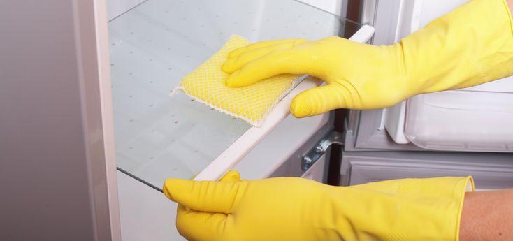 frigorífico limpo