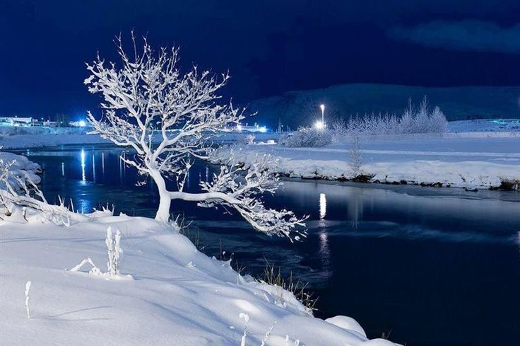 A Frosted Evening