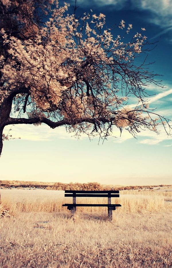 Surrealism: Photoshop Tutorial, Favorite Places, Inspiration, Bench, Color, Beautiful, Surrealism Photography, Gerald Reisinger, Things