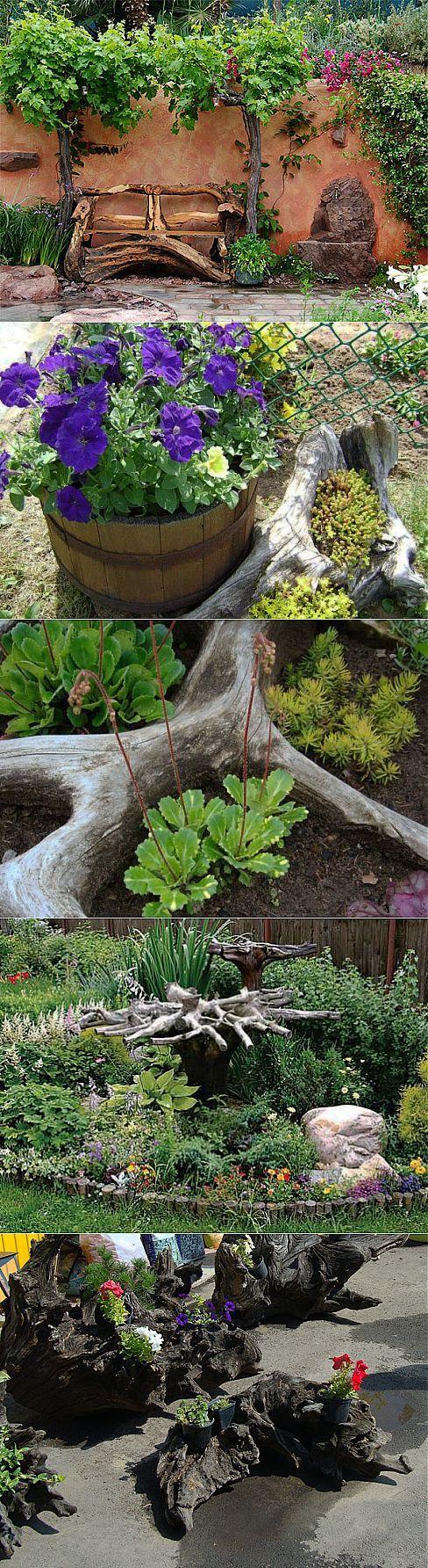 Пни, корни и коряги: рутарий в саду своими руками | СДЕЛАЙ САМ! | Цветы | Постила