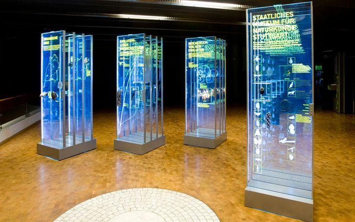 interactive survey exhibition - Google 検索