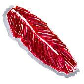 L'onglet est un petit muscle long, très tendre, que le boucher ouvre en deux pour former des bandes de chair, très juteuses. Comme la bavette, l'onglet est une viande de fibres longues, elle roule sous le palais !