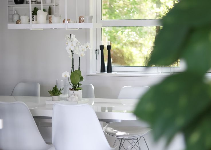"IG: @hvitelinjer. Blog: www.hvitelinjer.no     Orkide - hvitelinjer    #interior #inspiration #scandinavian #modern #design #decoration #orkide #flower ""greenflower"