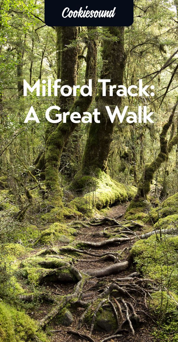 Milford Track is definitely more than just a physical journey; it's one of those hikes you'll never forget and tell your kids about.