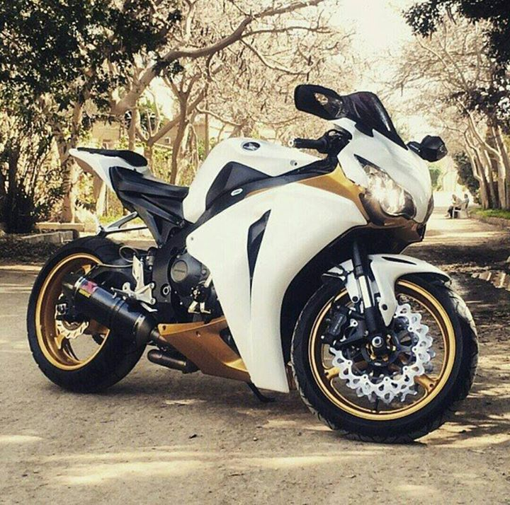 Cbr1000rr Mascunanabear: 258 Best Images About Blade On Pinterest