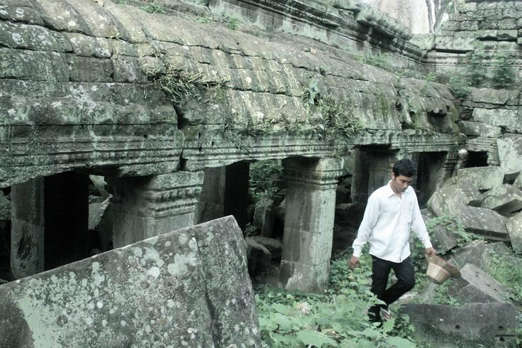 Ta Phrom Temple - Cambodge  Mon préféré