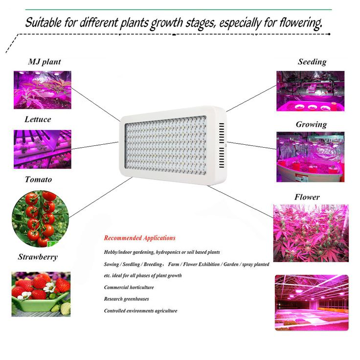 Gianor Led Lights Grow 1200W Full Spectrum LED Grow Light 200X6W Epistar Led Bulbs with Indoor Plants Lighting Suitable for Hydroponics/Greenhouse Plants Growing&Flowering