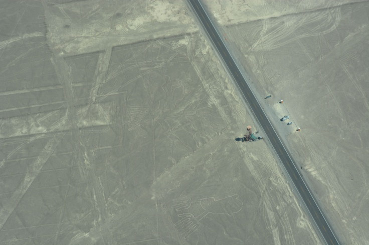 航空機からのナスカの地上絵(木と手)。