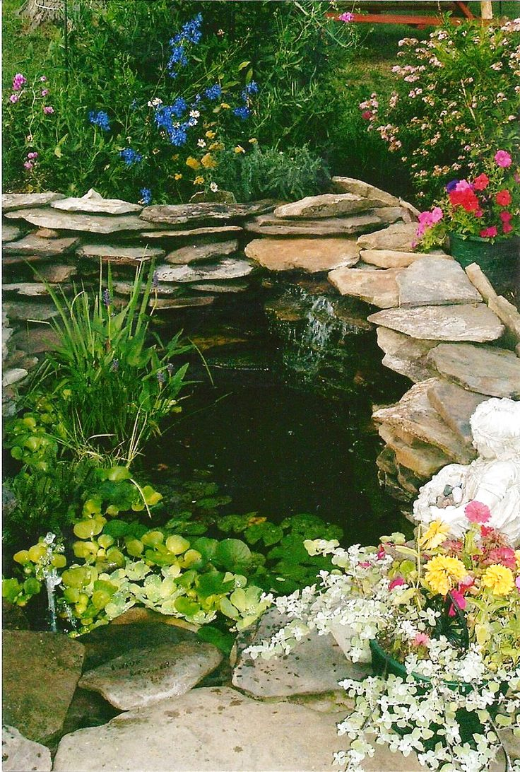 18 best images about pond and waterfalls on pinterest for Best garden ponds