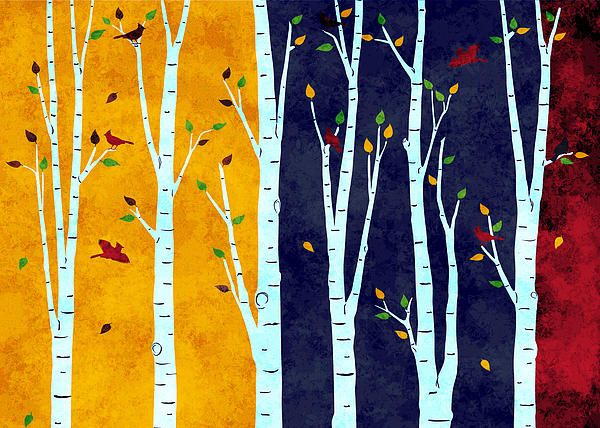 Autumn day and night in the birch forest, in the cardinal birds kingdom.
