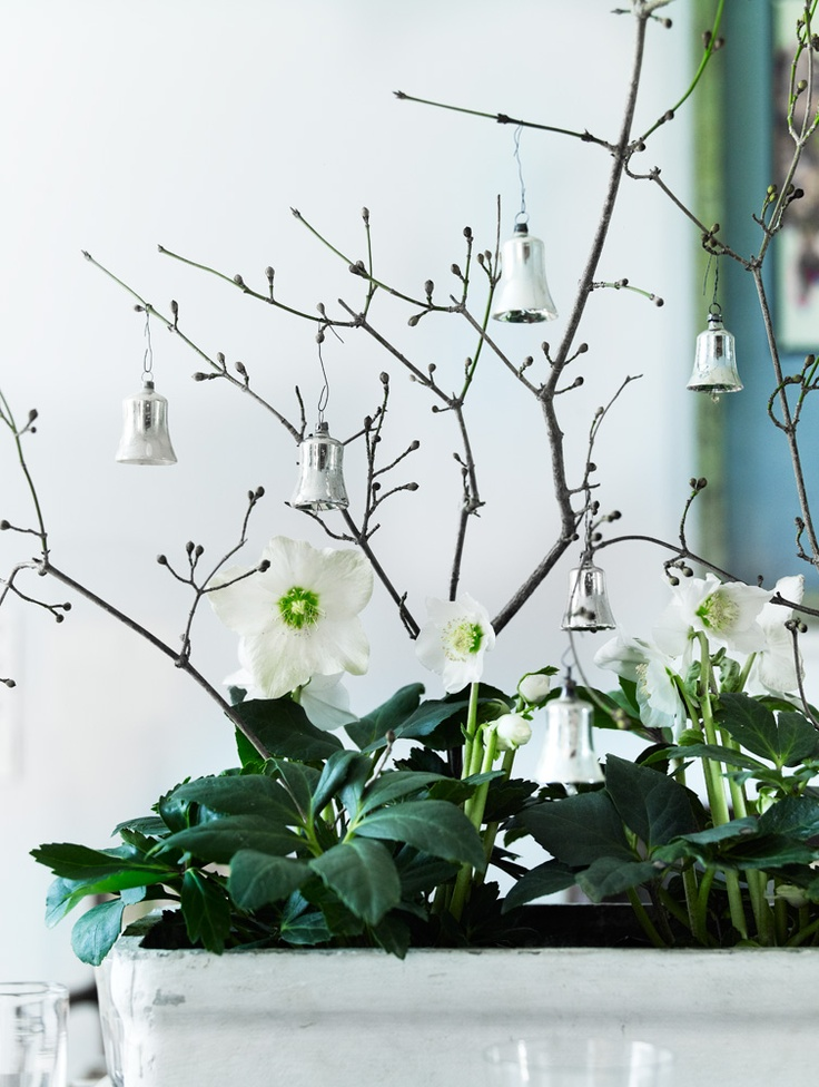 *THE GREEN GARDEN GATE*: NATURAL CHRISTMAS WITH FRENCH INFLUENCE