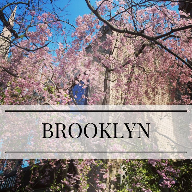 I live in the incredible borough of Brooklyn. Follow this board to see some of the cool activities I like to do when I'm at home.