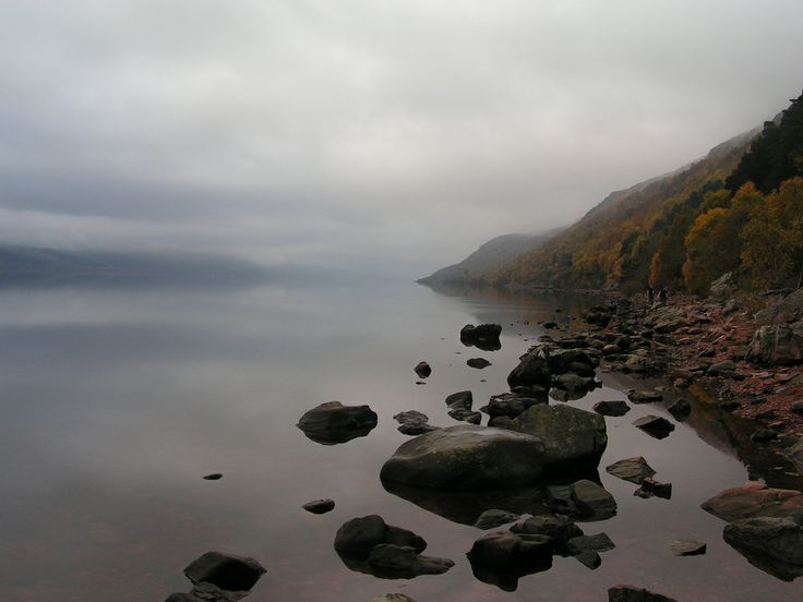 Loch Ness and Lake Champlain Monsters on the Move