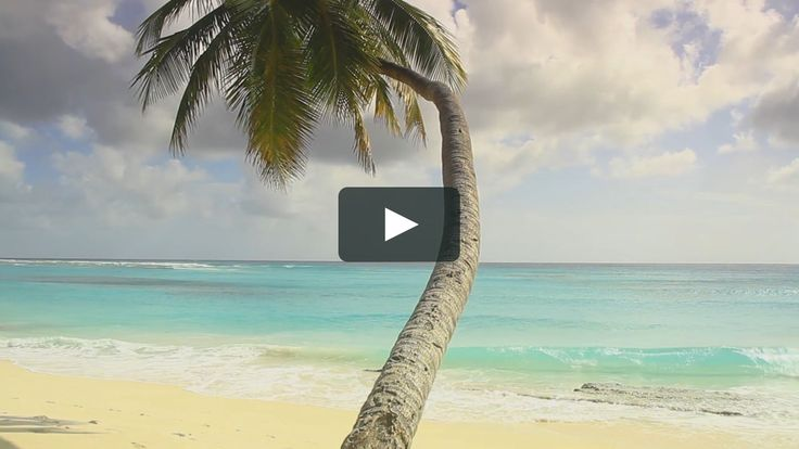 We love Mary-Kay's incredible Barbados video featuring the east coast, Flower Forest, St Nicholas Abbey, Farley Hill, Wildlife Reserve, Bridgetown and the beach!