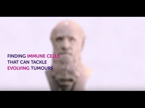 Finding immune cells that can tackle evolving cancers: Cancer Research UK scientists may have found the tools necessary to give immunotherapy the precision guidance that patients so desperately need. Read more about this research on our Science blog: http://po.st/YbfekN