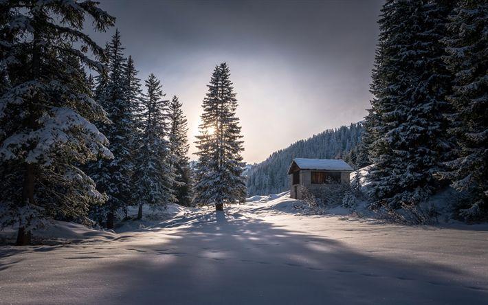 Download wallpapers winter, forest, snow, mountain landscape, sunset, Switzerland, hut