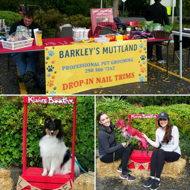 Sunny sunny Sunday at a local charity event with our kissing booth