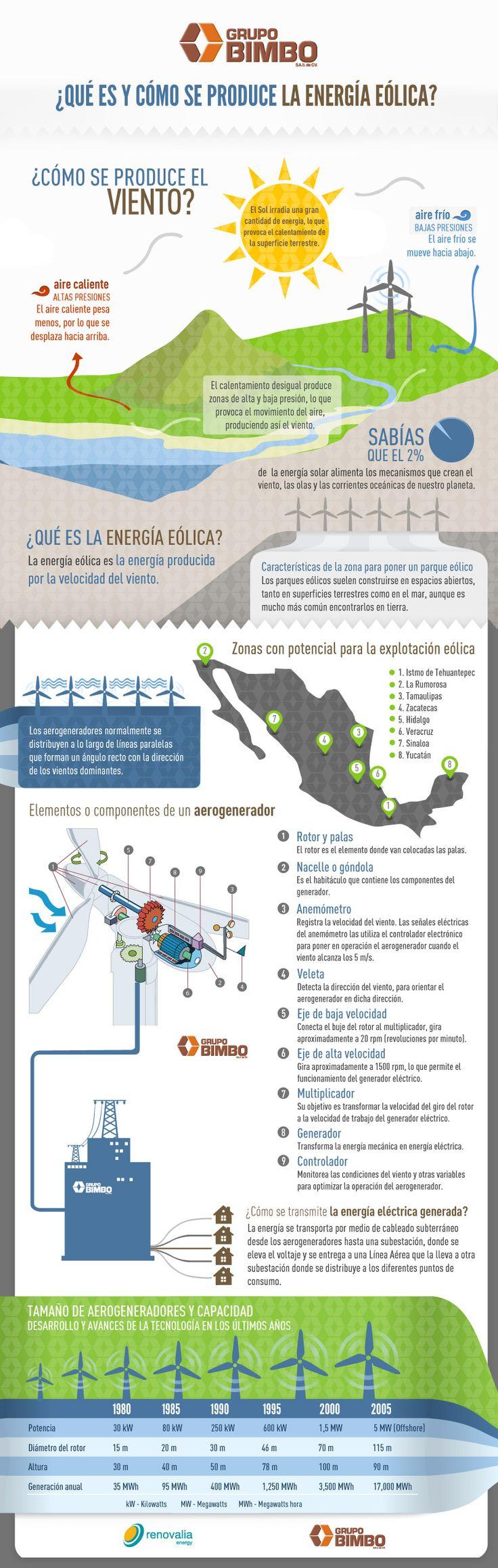 Qué es y cómo se produce la energía eólica #infografia #infographic #medioambiente