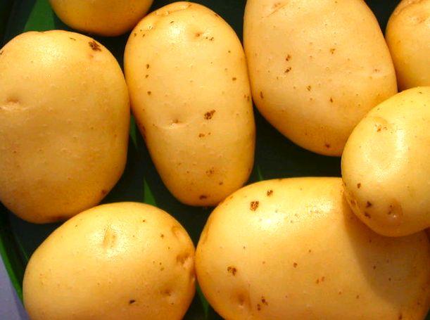 Come coltivare le patate in casa - Idee Green