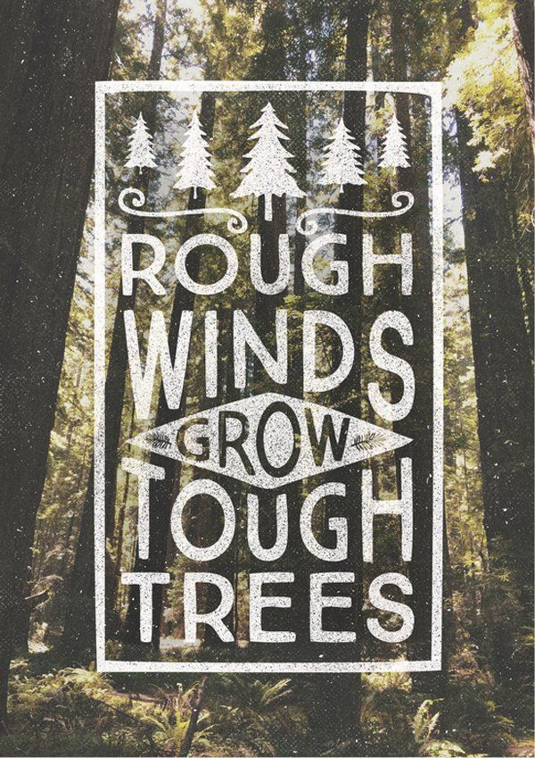 """Rough winds GROW tough trees."""