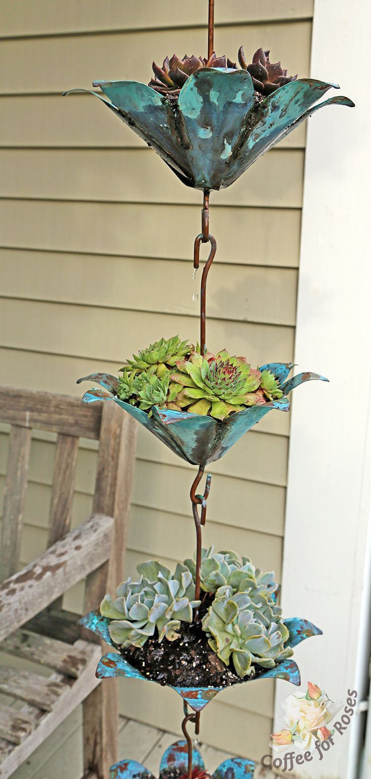 Plant a Rain Chain with succulents gardening