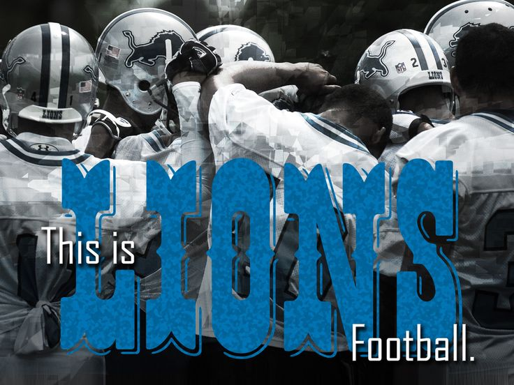 images of the detroit lions | ... Ticket Stub Holders at the 12/11 Detroit Lions Home Game 12/11 - 12/14
