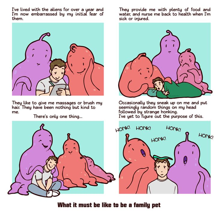 What it must be like to be a family pet