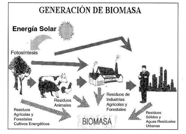 #FuentesDeEnergía #Renovables #Biomasa