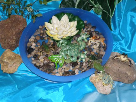 Irresistible ideas for play based learning blog archive for Small frog pond ideas