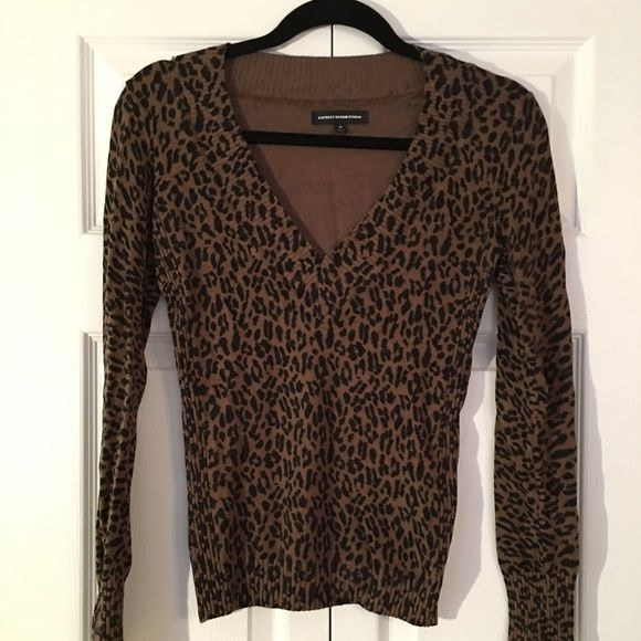 V neck pullover sweater Animal print pull over sweater . Express Sweaters V-Necks