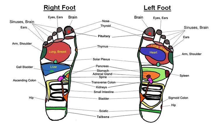 reflexology chart- foot pressure points