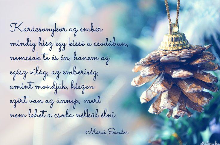#idézet #karácsony Márai Sándor idézet karácsonyra