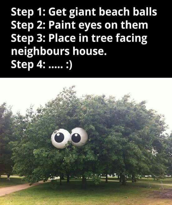 Funny Birthday Quotes For Neighbors: 25+ Best Ideas About Yard Pranks On Pinterest