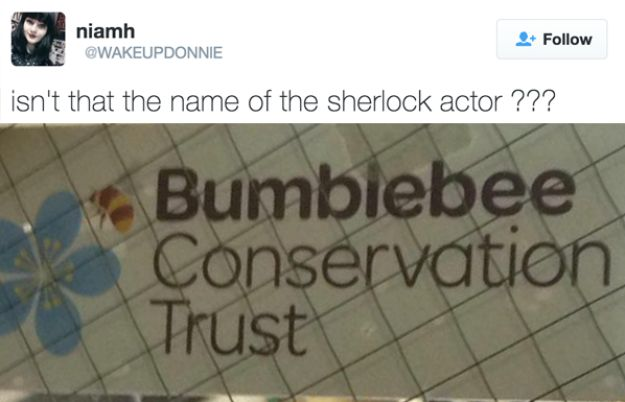 19 Times The Internet Lost Their Damn Mind Over Benedict Cumberbatch's Name