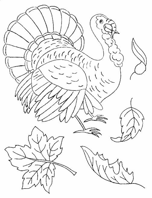 Turkey And Maple Leaf Embroidery Pattern | Crafts Coloring And Printables | Pinterest ...