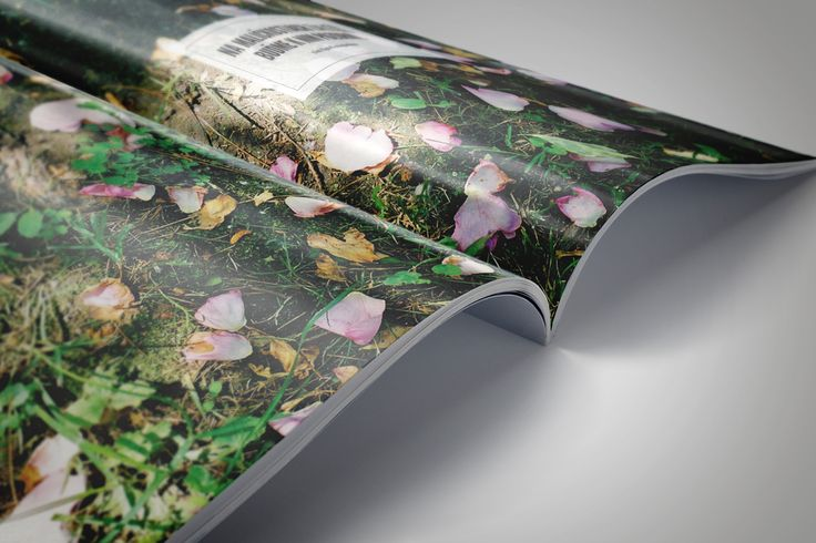egreš magazin