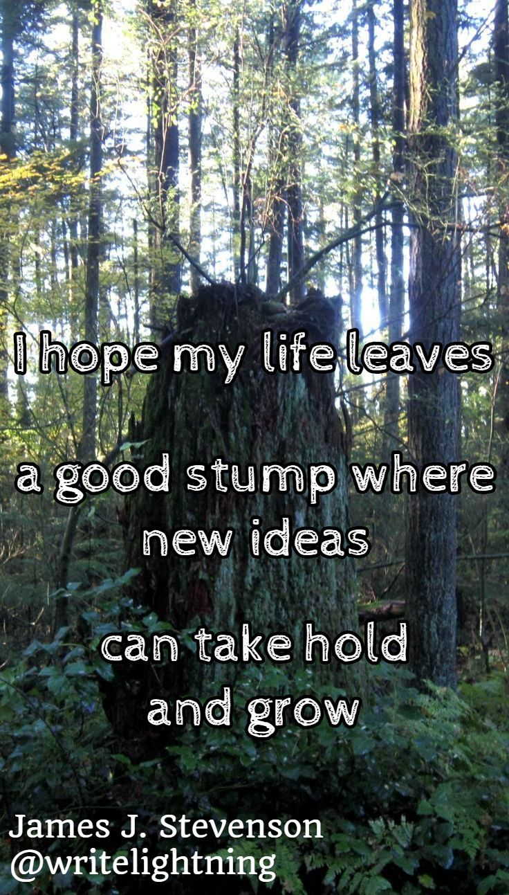 Forest old tree haiku.  Poetry by James J. Stevenson. For more: http://writelightning.tumblr.com/ and https://twitter.com/writelightning