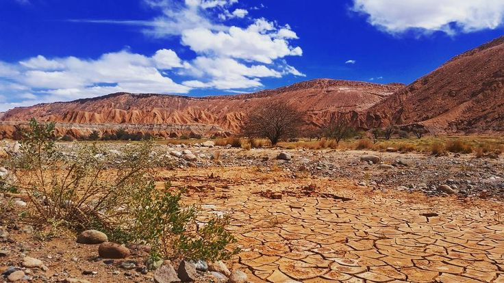 Biketour in atacama desert #valley #atacama #atacamadesert #desert #sanpedro #salt #stone #chile #sky #southamerica #latinamerica #lifegourmets #travel #traveling #vacation #visiting #instatravel #instago #instagood #trip #holiday #photooftheday #niceview #wonderland #mountainview #weltreise #aroundtheworld