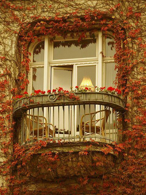 Autumn ivy balcony, Paris, France