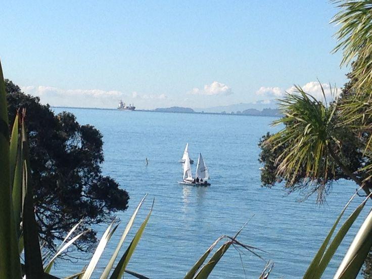 Sailing lessons off Takapuna Beach