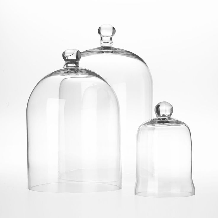 Glass dome- similar in appearance - simple and classic. would want about 25-30 cm