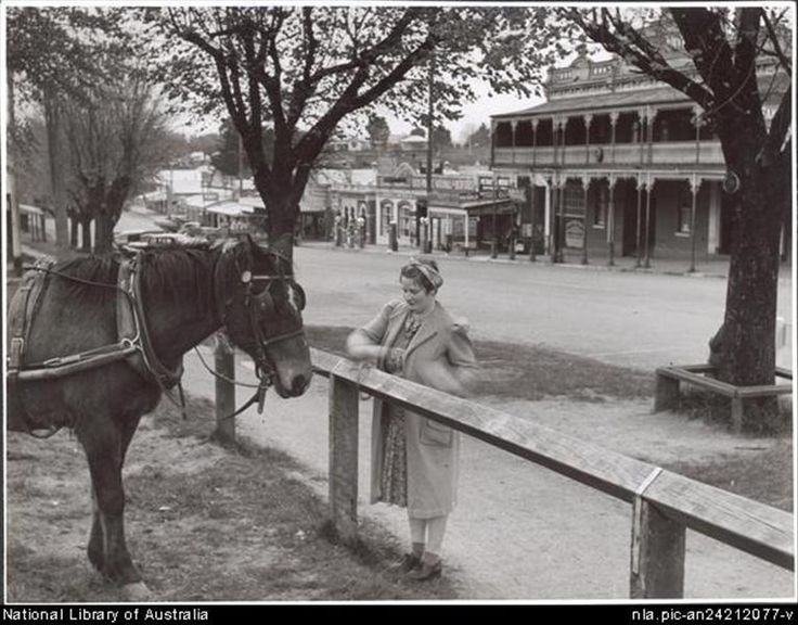 Culture Victoria - Ethel McDonald (farmer's wife) ties her horse in Main Street, Drouin, Victoria 1944