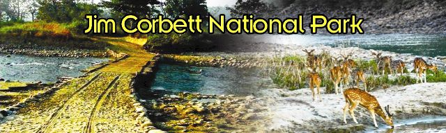Uttarakhand posts: जिम कॉर्बेट राष्ट्रीय उद्यान - 1936 में उत्तराखण्...