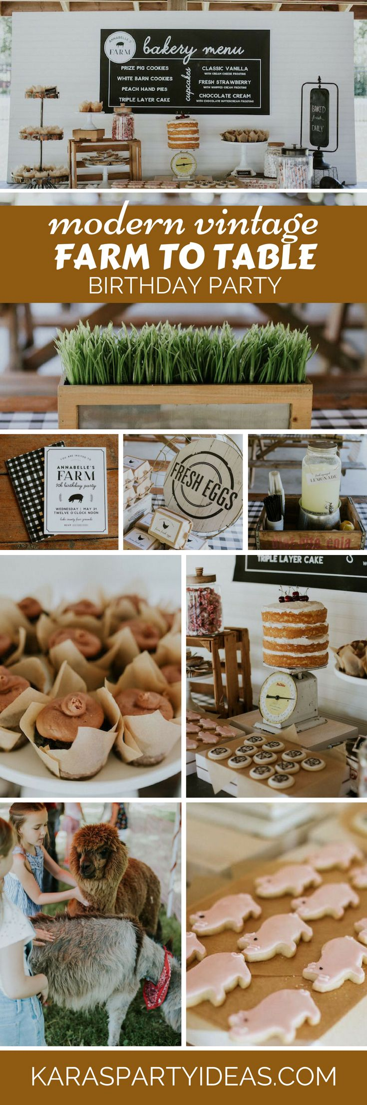 Modern Vintage Farm-to-Table Birthday Party