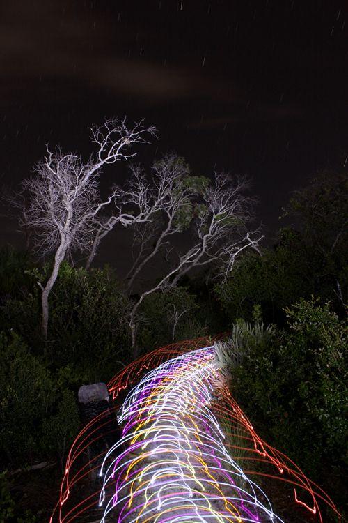 Jason-D.-Page-Light-Painting-Light-Trails-7.jpg (500×750)