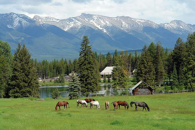 Farm backing a lake and mountains would be superb. This is taken in Montana.